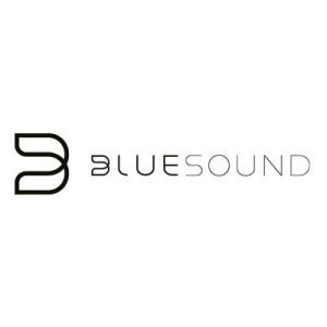 littleguys_brands_bluesound